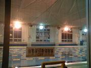 水泳指導&水泳に関する悩み相談