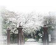 2012★学習院女子大学新入生