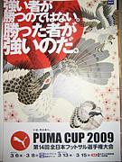 2009全日本フットサル選手権