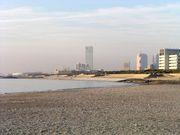 千葉でビーチバレーやってる人