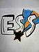 E.S.S.