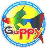 新宿3丁目『GUPPY』