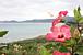 東海発!石垣島へ行きた〜い。