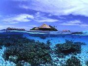 神秘のセブ島!