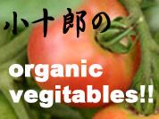 小十郎の organic vegitables!!