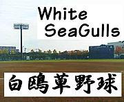 White Sea Gulls(白鴎草野球)