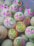 和歌山の農☺