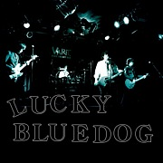 LUCKY BLUEDOG(ex.Thee apes)
