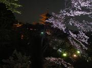 ぶらり京都