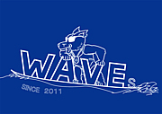 waseda waves