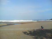 八戸の海LOVE