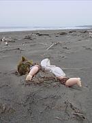The Antarctic Ocean Doll