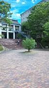県立広島大学×庄原C H22年