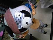∈♪愛熊猫組織♪∋