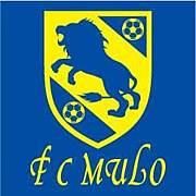 FC мцго