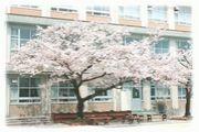 今池中学校S57〜S58!