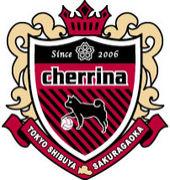 桜丘cherrina FC
