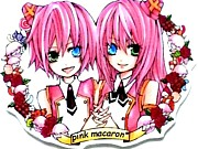 pink macaron*連合支部