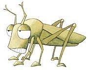 the grasshopper(笑)