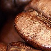 最高品質の本当にいいコーヒーを
