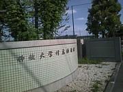 佛教大学附属幼稚園