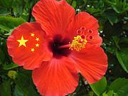 中国・沖縄 友好コミュ
