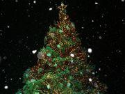 *:;:*毎日がクリスマス!!*:;:*