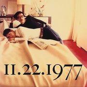 1977年11月22日生まれ