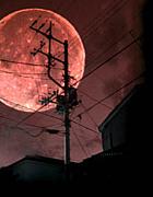 †Strawberry Moon†