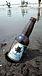 海でビール掛け2010