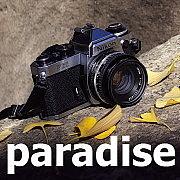 Paradise @(有)イケハラ