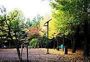 羽根木公園が好き。。