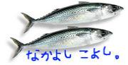 土佐清水市『友達の輪!!』