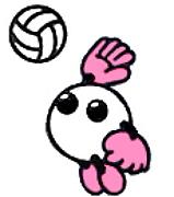 ソフトバレーボールin滋賀