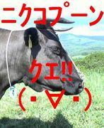 ニクコプーン(・∀・)クエ!!