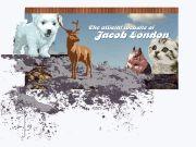 Jacob London