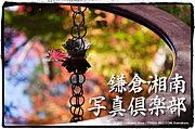 鎌倉湘南写真倶楽部