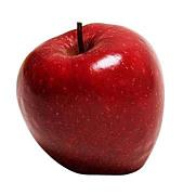 1998年 りんごの輪