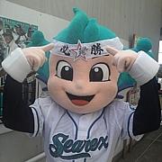 レック【湘南シーレックス】