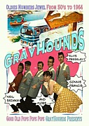 GRAYHOUNDS(グレイハウンズ)