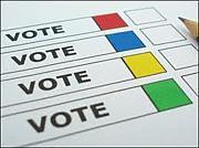 ネットを使って直接投票しよう!