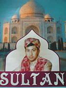 インド料理・カレー「スルタン」