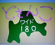 STVどさんこワイド180