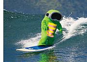 保育士サーフィン部