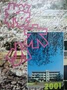 千葉市立桜木小学校2001年卒業生