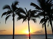ハワイ永住