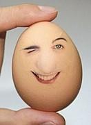 卵にゃかなわない