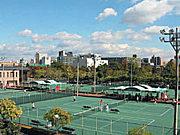 江坂TC フリーコート テニス部