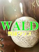 WALD〜野球クラブ〜