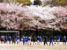 成城学園サッカー部
